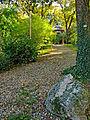 Botanička bašta Jevremovac, Beograd - Japanski vrt 01.jpg
