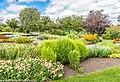 Botanic Gardens In Glasnevin (Dublin) (7951851502).jpg