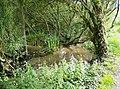 Brading Marsh - geograph.org.uk - 471560.jpg