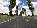 Braidwood NSW 2622, Australia - panoramio (70).jpg