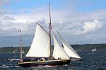 Brest 2012 Lys Noir.jpg
