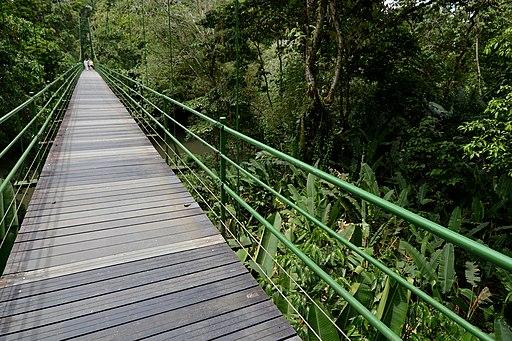 Bridge Puerto Viejo, Heredia, Costa Rica Places to Visit in Costa Rica