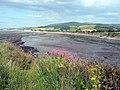 Bridgwater Bay east of Watchet - geograph.org.uk - 1961776.jpg