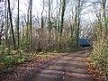 Bridleway ends - geograph.org.uk - 1605266.jpg
