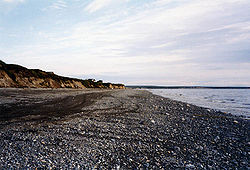 Bristol Bay shore.jpg