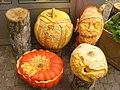 Britzer Garten - Kurbisschau (Pumpkin Show) - geo.hlipp.de - 29286.jpg