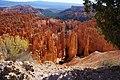 Bryce Canyon Parc-National en2016 (15).JPG