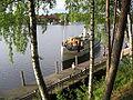 Brygg och roddfest 066.jpg