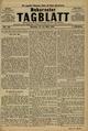 Bukarester Tagblatt 1882-05-21, nr. 110.pdf