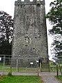 Burnchurch castle - geograph.org.uk - 993784.jpg