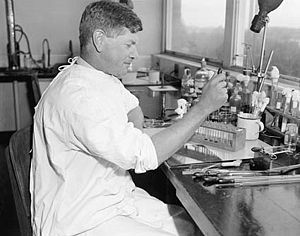 Frank Macfarlane Burnet - Burnet working in the laboratory in 1945