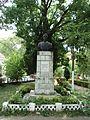 Bustul lui Damaschin Bojinca.jpg