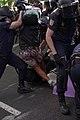 C039 Posados robados junto al Congreso.JPG
