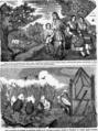 CE NI SE IA, SI CE NI SE DA, Bobârnacul, 20 iul 1878.png