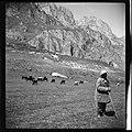 CH-NB - Russland, Nordossetien- Landwirtschaft (Lokalisierung unsicher) - Annemarie Schwarzenbach - SLA-Schwarzenbach-A-5-04-242.jpg