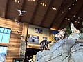 Cabela's- Green Bay, WI - Flickr - MichaelSteeber (6).jpg