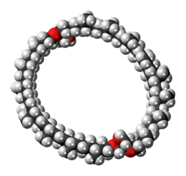Space-filling model of the caldarchaeol molecule{{{画像alt1}}}