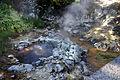 Caldeira e riacho, Vale das Furnas, Povoação, ilha de São Miguel, Açores.JPG