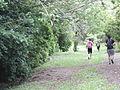 Caminando por el bosque encantado en Buga natural.JPG