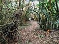 Camino en el monte Vizmaya.jpg