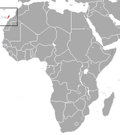 Canarian Shrew area.png