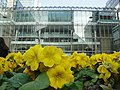 Canary Wharf Reebok Sports Club from Canada Square Park.JPG