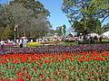 Canberra Floriade 2004.JPG