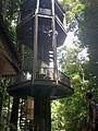 Canopy Tower at KL Forest Eco Park.jpg