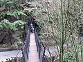 Capillano suspension bridge vancouver bc canada - panoramio.jpg