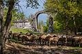 Carsulae, l'arco di Traiano.jpg