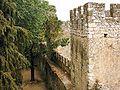 Castelo de Torres Novas (17).JPG