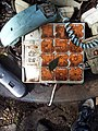 Cathedral of Junk (8095650669).jpg