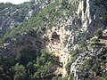 Caves and cavities in strongly layered limestone cliffs - panoramio.jpg