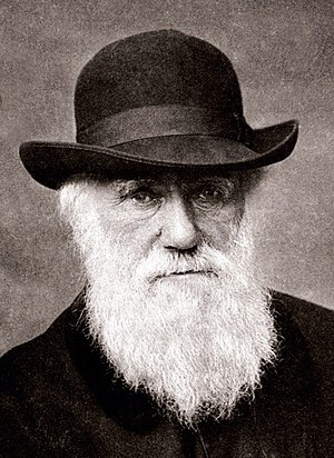 Elizabeth Cotton, Lady Hope - Charles Darwin in 1881, the year before his death.