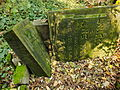 Chenstochov ------- Jewish Cemetery of Czestochowa ------- 175.JPG