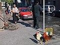 Chickens awaiting their fate (5211295849).jpg