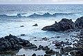 Chile-02917 - Surfs Up.. (49072214093).jpg
