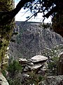 Chiricahua National Monument rock formations framed by a living tree.jpg