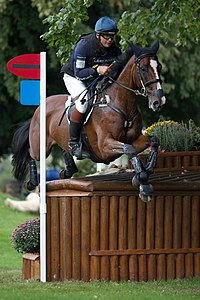 Clayton fredericks be my guest ii dairy farm burghley 2010.jpg