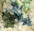 Clinoclase-Olivenite-Quartz-142429.jpg