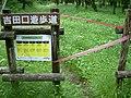 Closing of Yoshidaguchi trail route for coronavirus.jpg