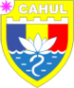 CoA of Cahul.png