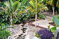 Colección Palmetum de Santa Cruz de Tenerife 16.JPG