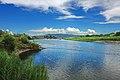 Colorado River in Colorado (9741119871).jpg