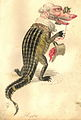 Comus 1873 Alligator.jpg