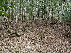 National Register of Historic Places listings in Richland County, South Carolina - Image: Cooner's Cattle Mound SC NPS