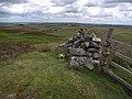 Coquet Cairn - geograph.org.uk - 1412779.jpg