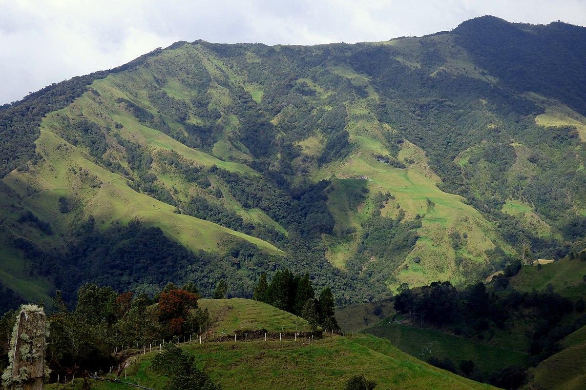 Cordillera Central de los Andes colombianos - Camino nacional - 2800 msnm - Flickr - Alejandro Bayer (1).jpg