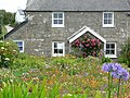 Cottage garden - geograph.org.uk - 690562.jpg