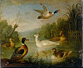 Cradock, Marmaduke - Mallards on a Pond - Google Art Project.jpg